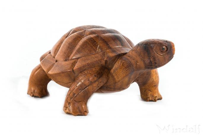 Schildkröte ~ LUCKY ~ Holzfigur - Windalf.de