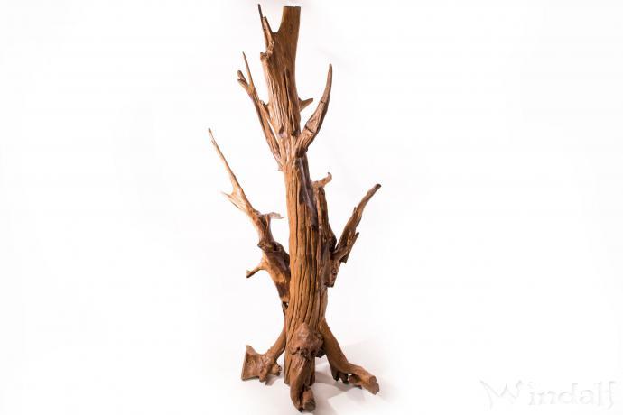 Garderobe lazy deko holzskulptur 195 cm wurzelholz for Garderobe deko